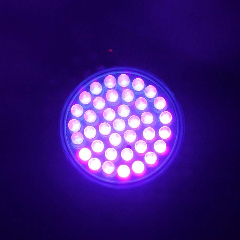 Ultra Bright E27 Uv Ultraviolet Color Purple Light 38led Lamp Bulb 110 220v Vv Ebay