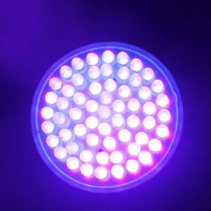 E27 Uv Ultraviolet Color Purple Light 60led Lamp Bulb 110v Ultra Bright Light Ebay